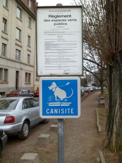 Canisite